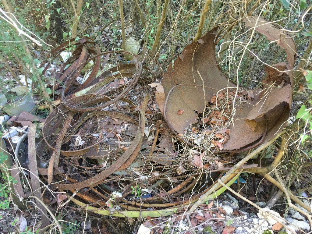 Problem ilegalnih deponija, autoolupina i odvoza glomaznog otpada s Biševa