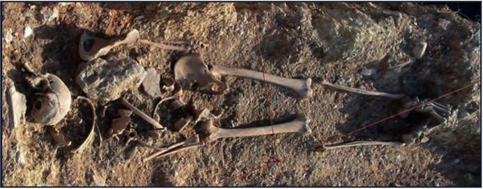U južnom dijelu rova pronadena su tri ulomka lubanje.